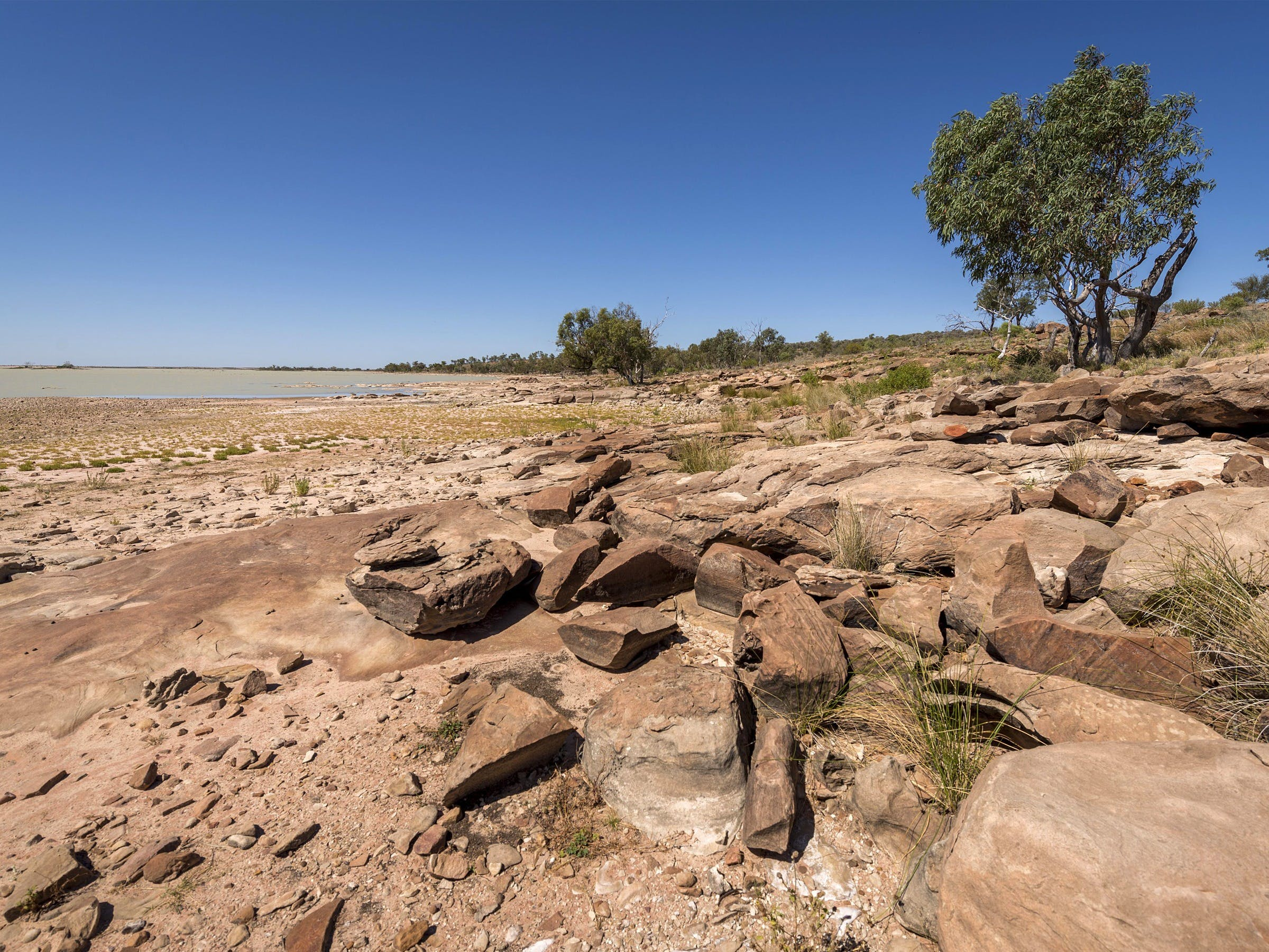 Peery Lake picnic area - Lightning Ridge Tourism