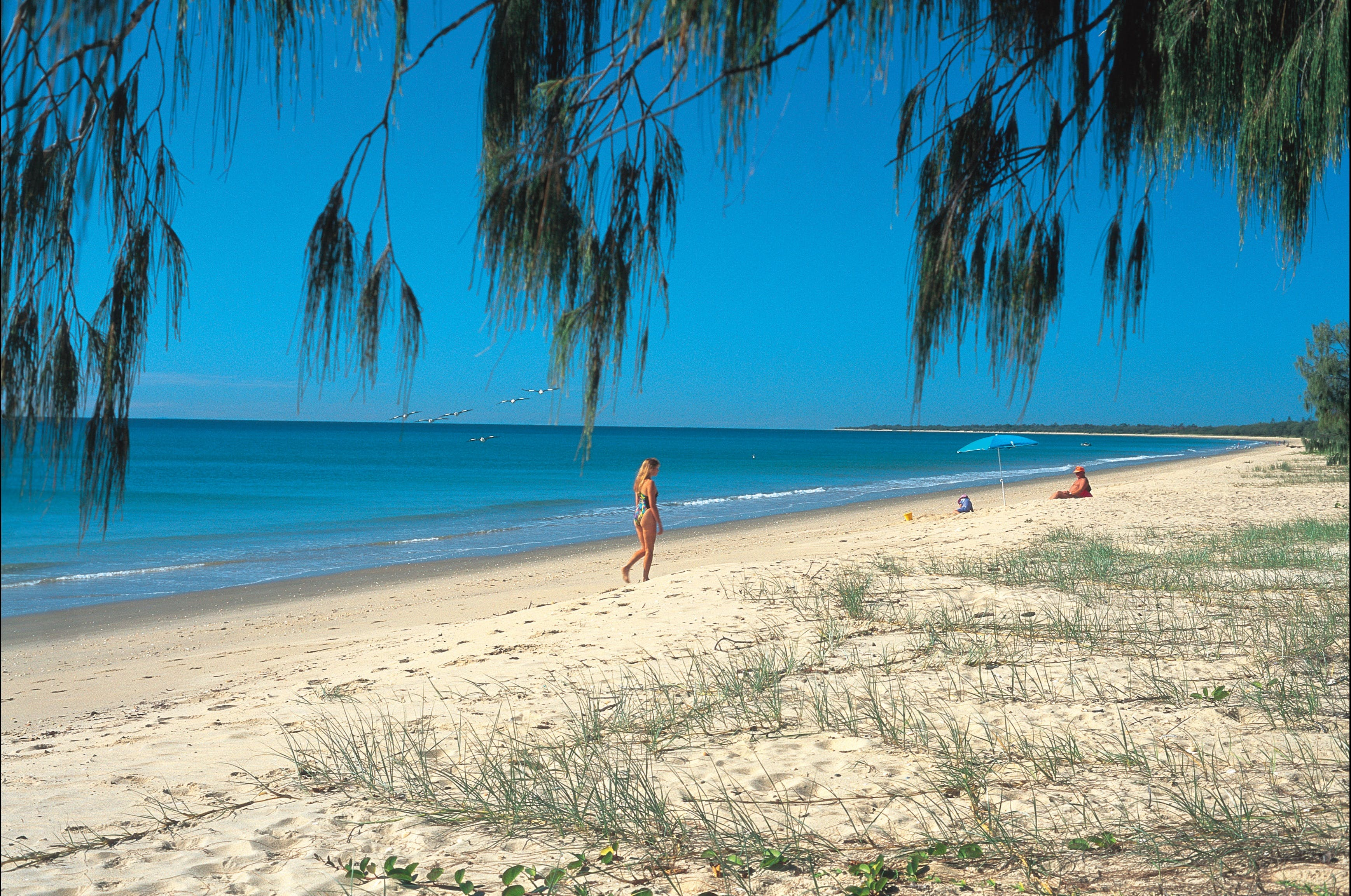 Woodgate Beach Park and Playground - Lightning Ridge Tourism