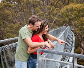 Valley of the Giants Tree Top Walk - Lightning Ridge Tourism