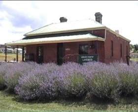 Lavender House in Railway Park - Lightning Ridge Tourism
