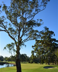 Ryde-Parramatta Golf Club - Lightning Ridge Tourism