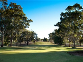 Loxton Golf Club - Lightning Ridge Tourism