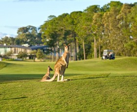 Sanctuary Cove Golf and Country Club - Lightning Ridge Tourism
