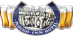 Plough Inn Hotel - Lightning Ridge Tourism