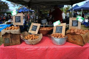 Lawson Park Markets - Lightning Ridge Tourism