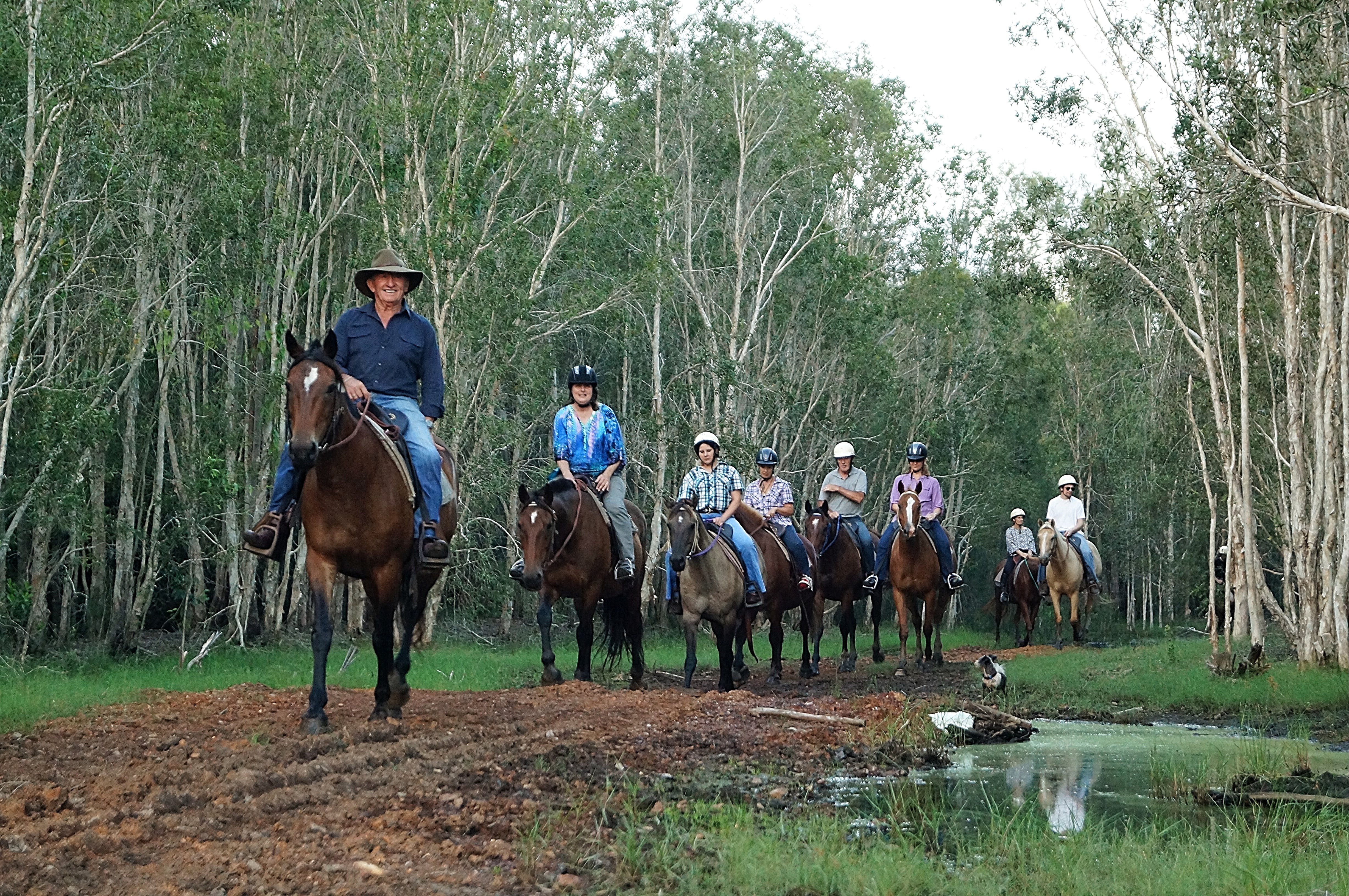 Night Horse Ride and Dinner - Lightning Ridge Tourism