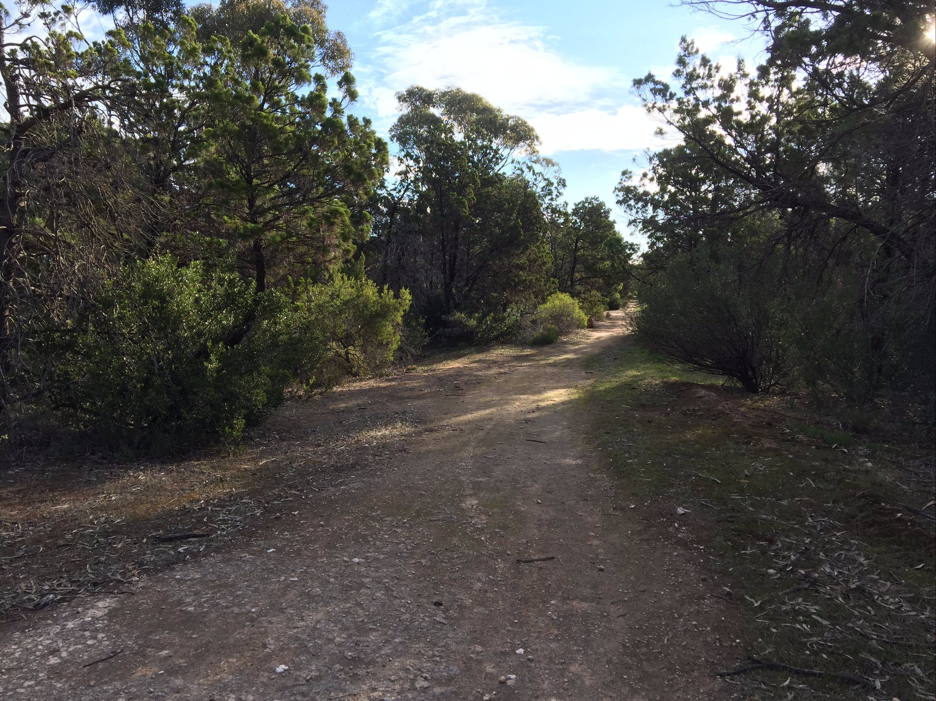 Victoria Park Moonta monthly walks - Lightning Ridge Tourism