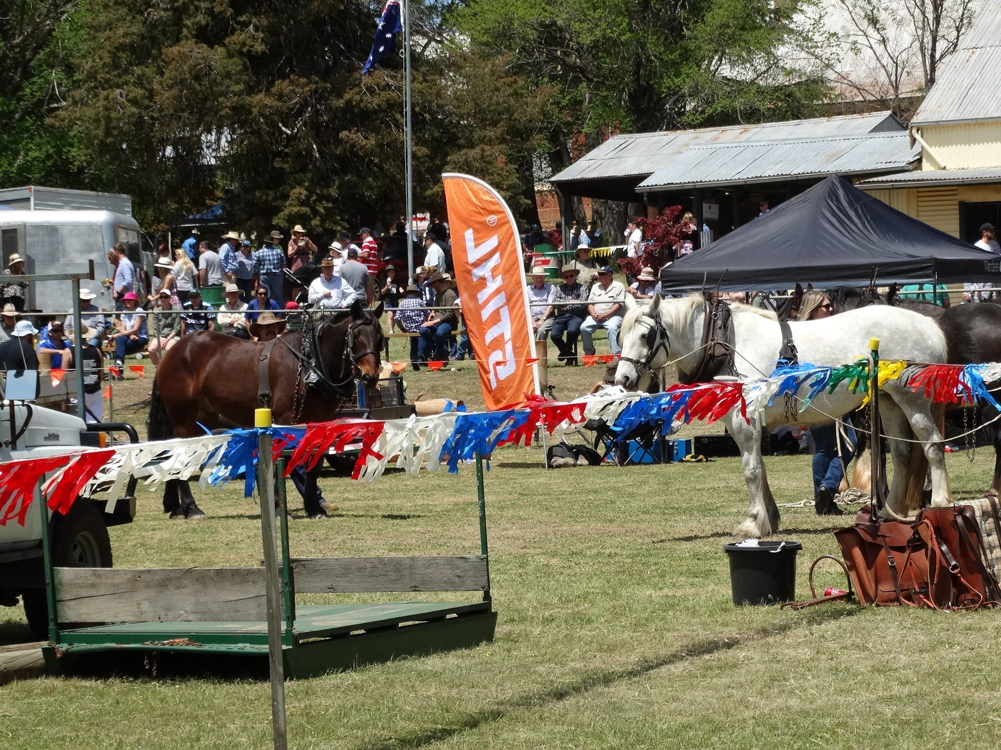 Carcoar Show - Lightning Ridge Tourism