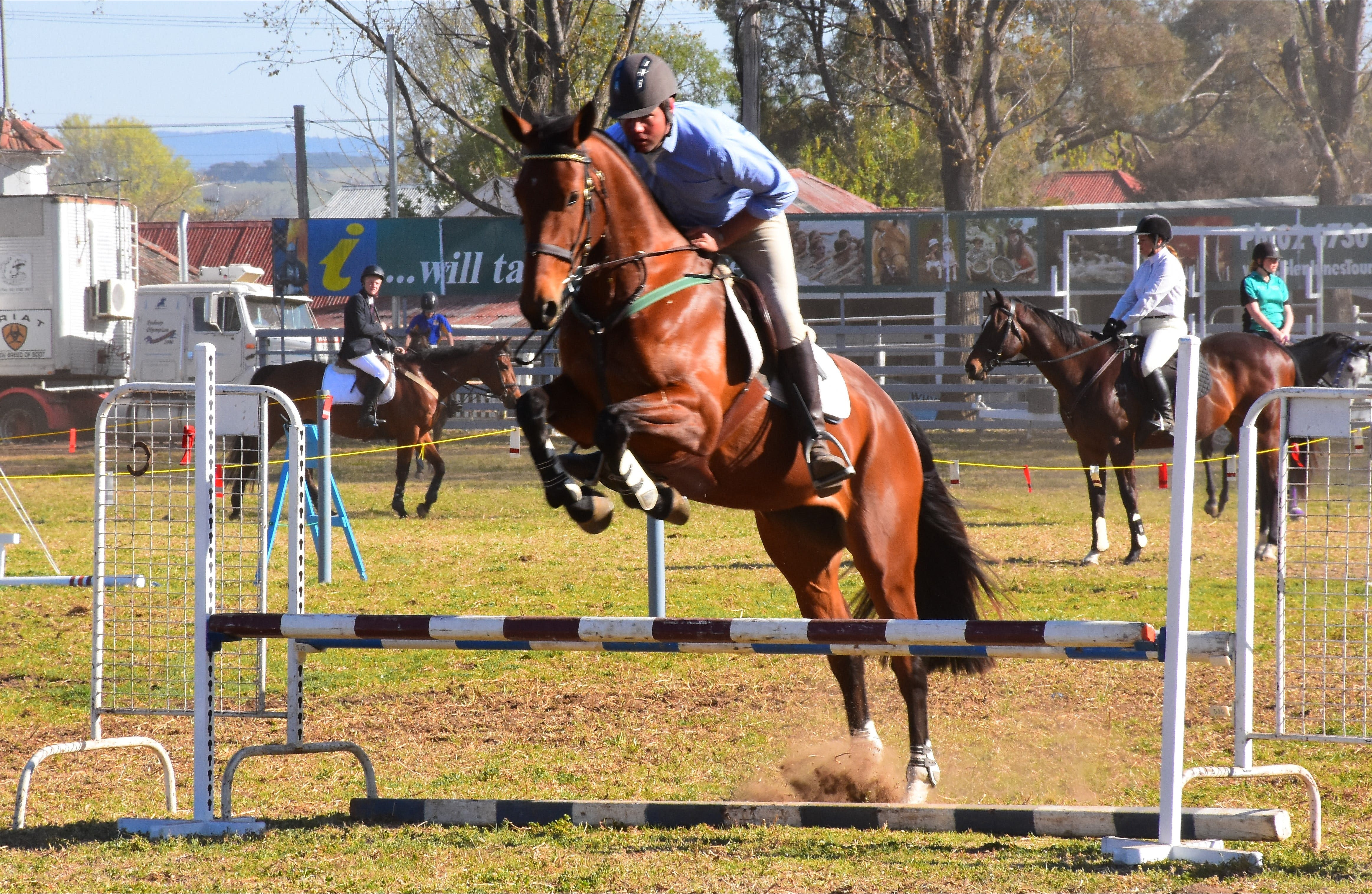 Glen Innes Pastoral and Agricultural Show - Lightning Ridge Tourism