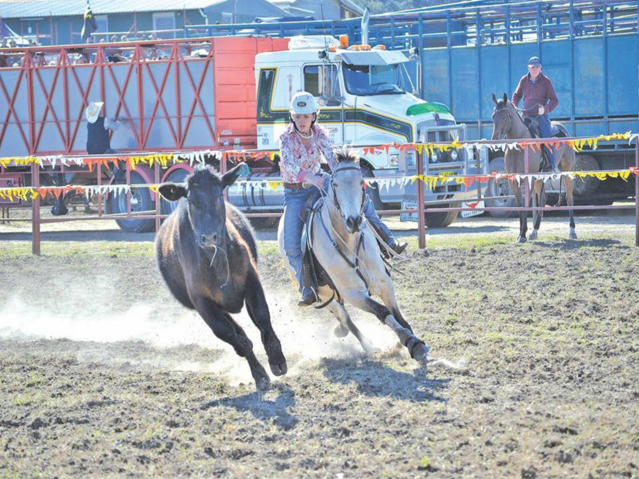 Gresford  Campdraft and Rodeo - Lightning Ridge Tourism