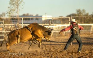Walgett Charity Bushman's Carnival Rodeo and Campdraft - Lightning Ridge Tourism