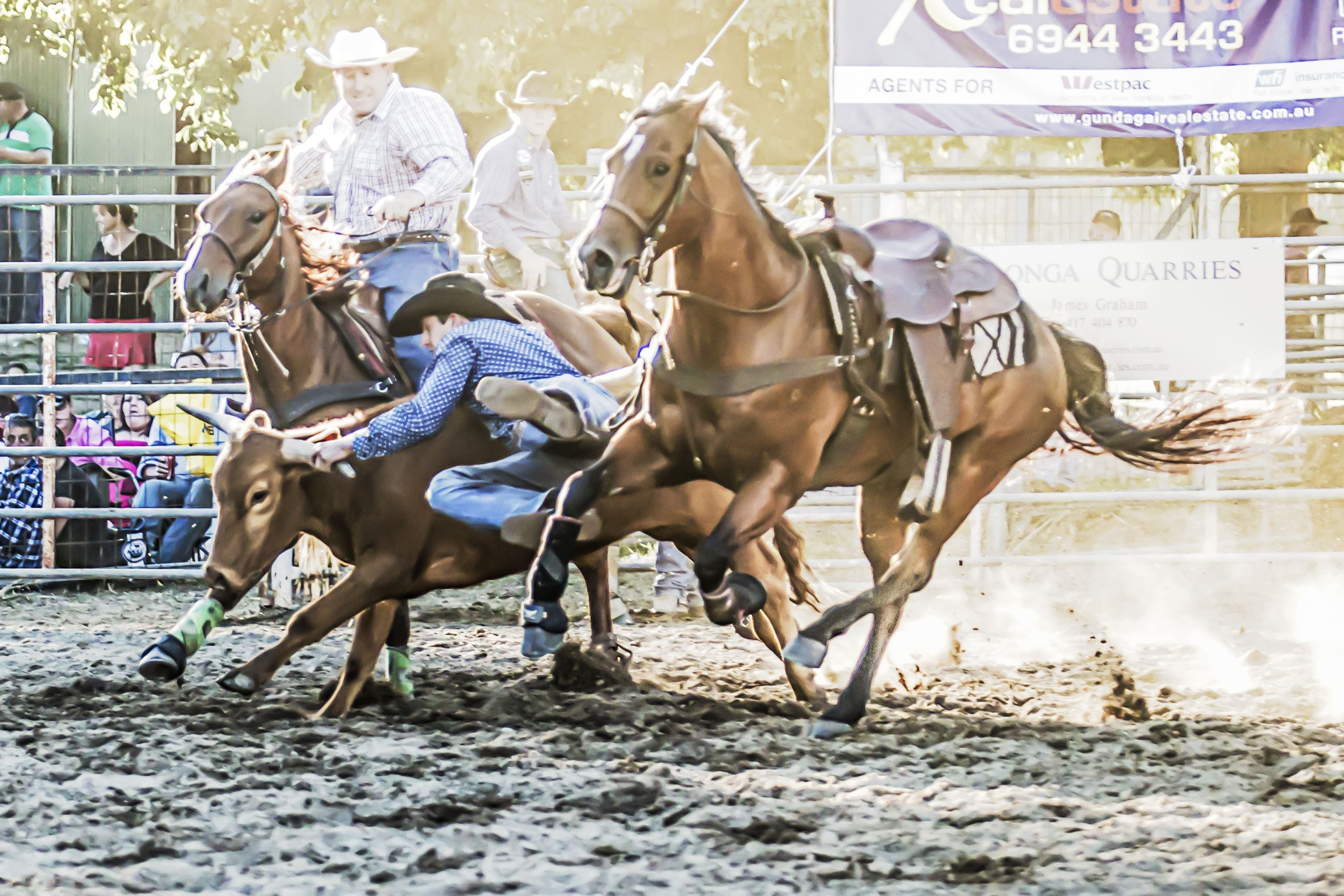 Gundagai Rodeo - Lightning Ridge Tourism
