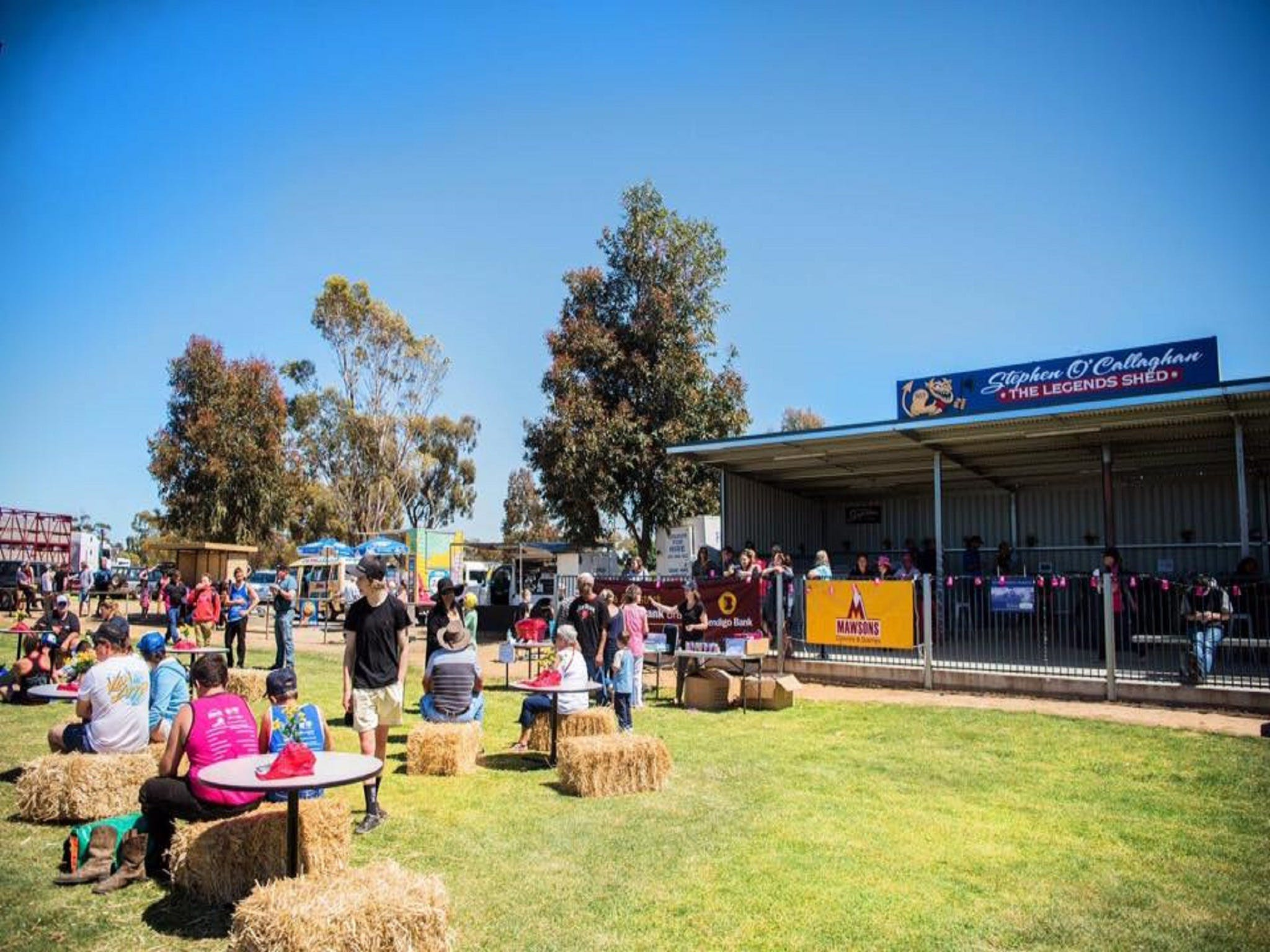 Mathoura Speed Shear and Annual Cancer Fundraiser - Lightning Ridge Tourism