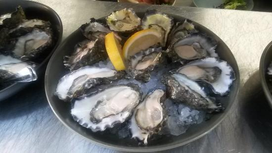 Hamilton's Oyster Bar - Lightning Ridge Tourism