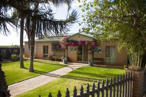 Capricorn Holiday Park - Lightning Ridge Tourism